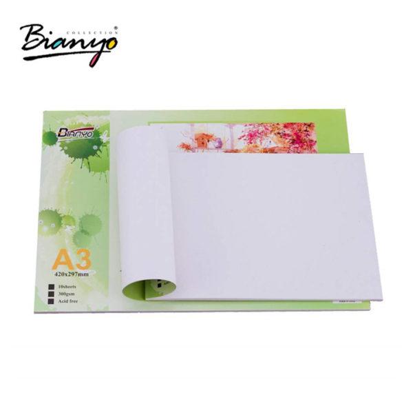 Bianyo Acrylic Painting Pads